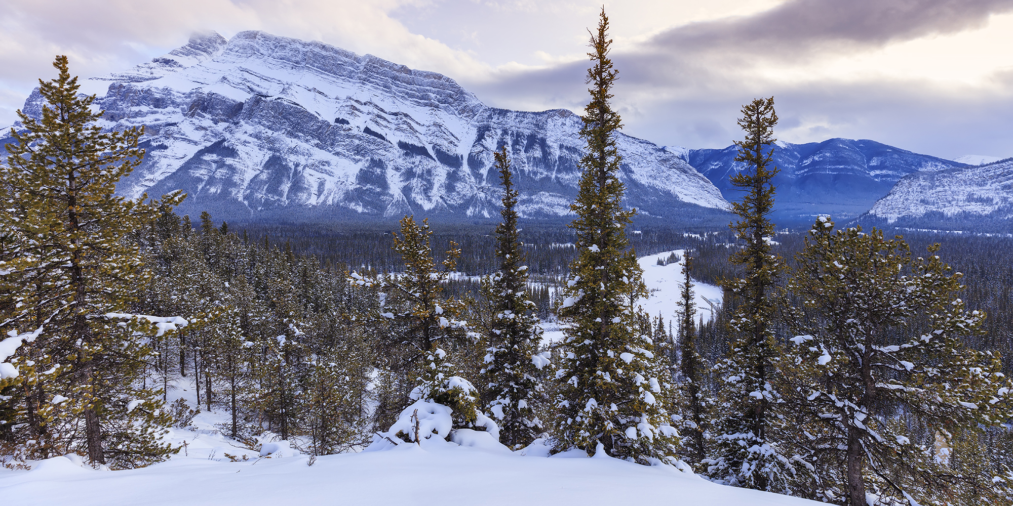 mount rundle in winter